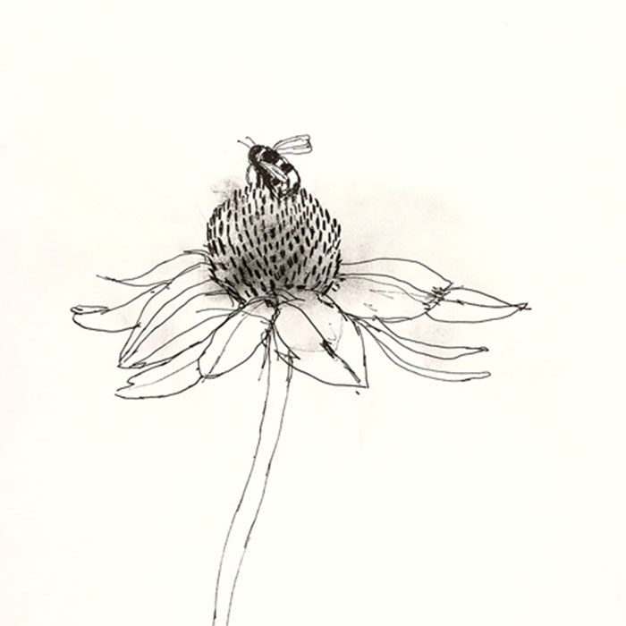 Bumbleebe